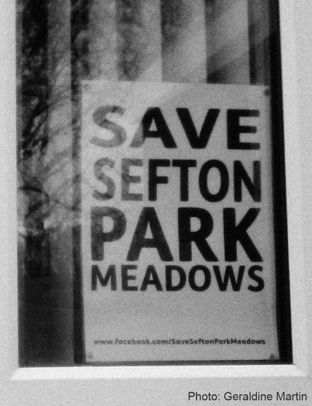 SAVE SEFTON PARK MEADOWS Campaign Poster
