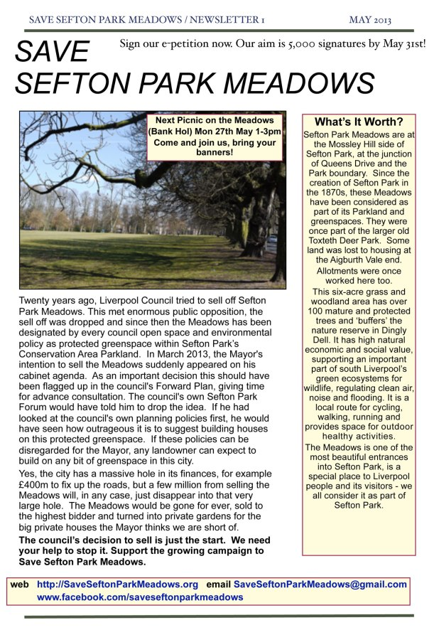 MEADOWS NEWS-May (page 1)