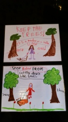 Local kids pix on Meadows trees