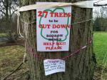 Meadows Trees at Risk