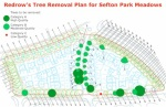 Redrow Tree Removal Plan